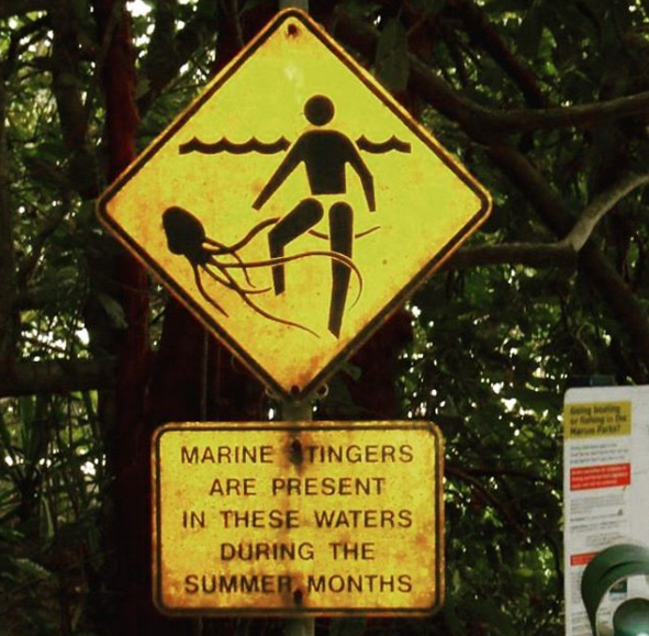 sign for stingers in Australia